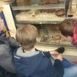 Spendenübergabe der Klasse 6b an das Tierheim in Pettendorf