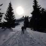 Wintersporttag der 7. Klassen am Arber